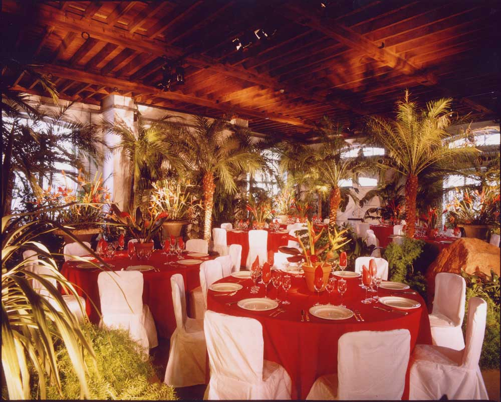palmbrokers parties events portfolio tropical themed party