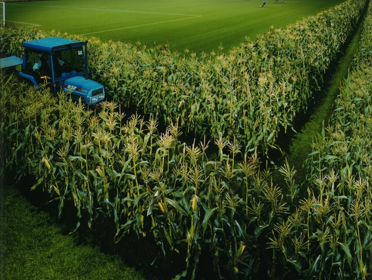 Stills - Heinz Soups Real sweetcorn crops and soil give the effect of this sweetcorn field on location in Huddersfield.